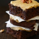 pumpkin brownies with brown sugar icing & candied pecans www.climbinggriermountain.com