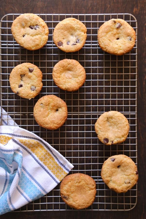 gingerbread muffins with dark chocolate glaze www.climbinggriermountain.com