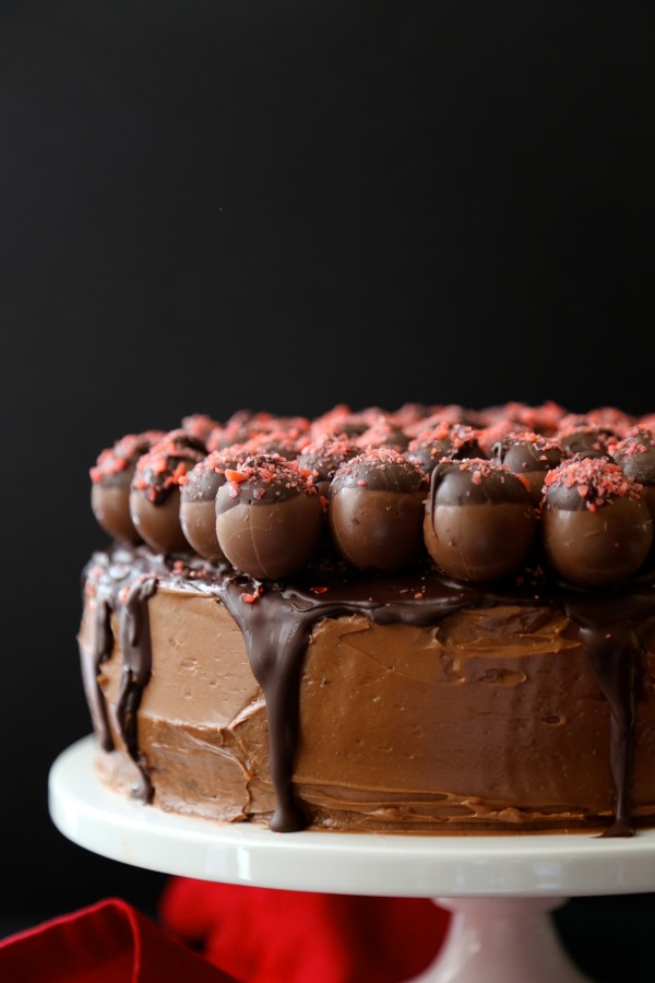 dark chocolate cake with cherry pop rocks covered truffles
