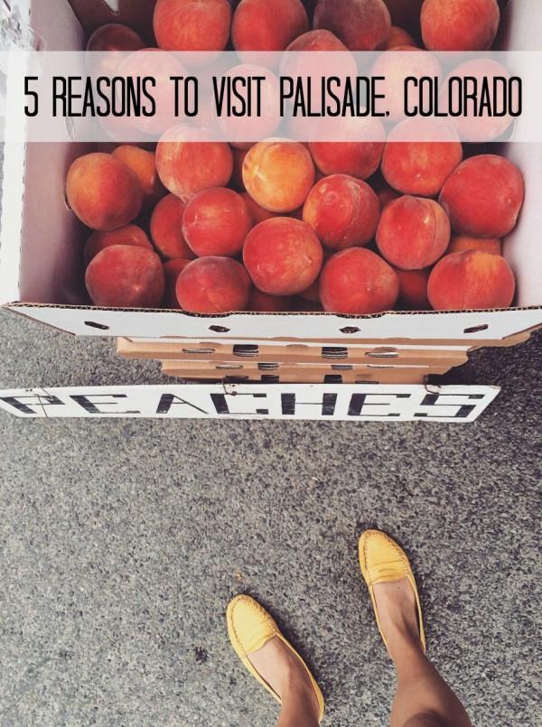 5 reasons to visit palisade colorado www.climbinggriermountain.com