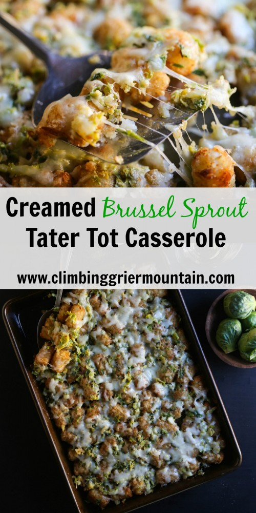 creamed brussel sprout tater tot casserole www.climbinggriermountain.com IV