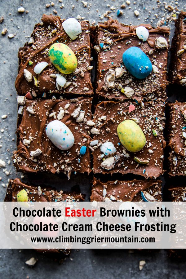 Chocolate Easter Brownies with Chocolate Cream Cheese Frosting www.climbinggriermountain.com.